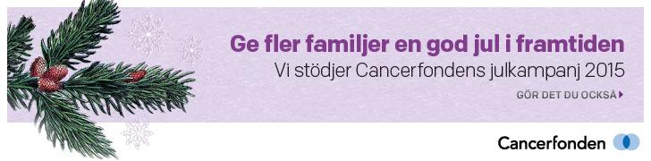foretagspaket2015-banner-728x180
